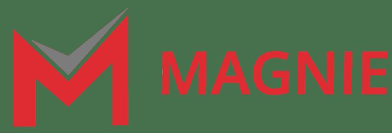 Magnie Logo Quer